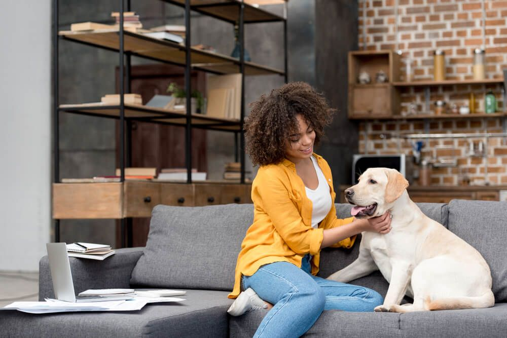 woman-takes-break-from-working-from-home-with-adopted-dog