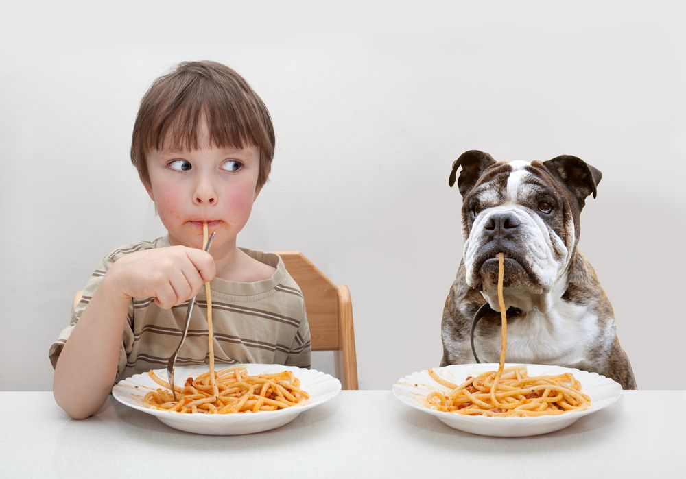 young-boy-shares-a-spaghetti-dinner-with-his-dog