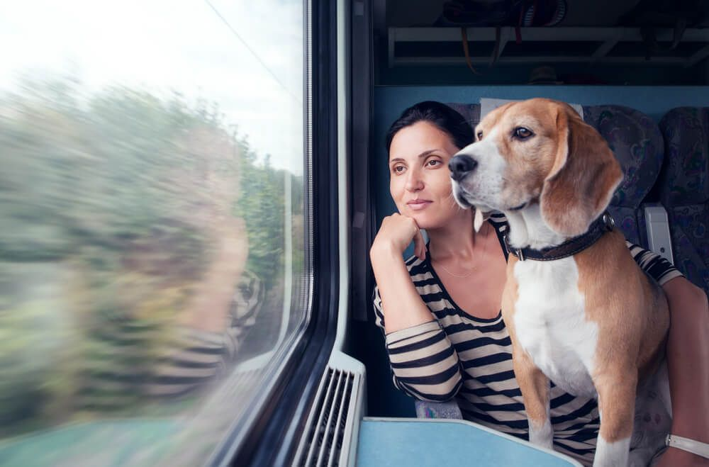 woman-traveling-by-train-with-her-emotional-support-hound-dog