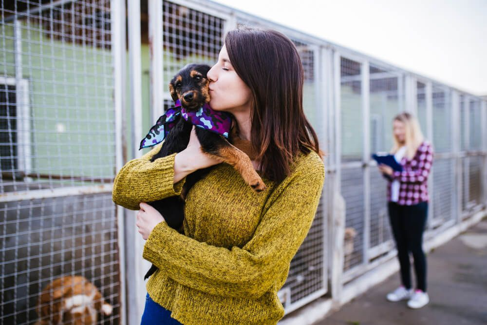 young-woman-brings-dog-home-from-shelter