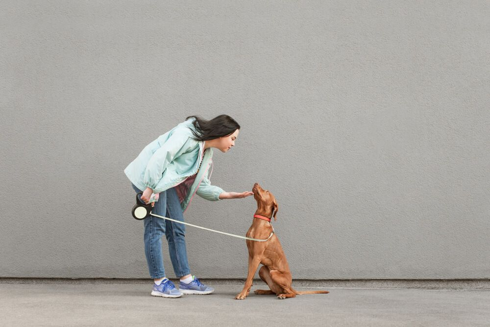 girl-practices-obedience-training-with-dog-on-a-leash