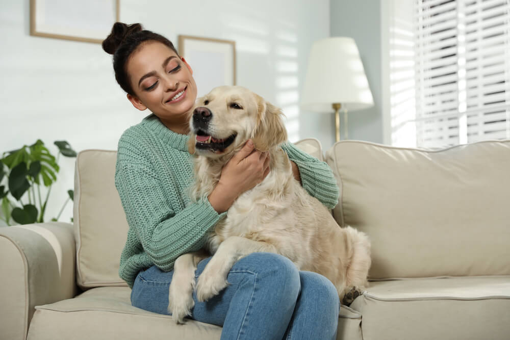 woman-sits-with-her-therapy-dog-golden-retriever-on-her-lap