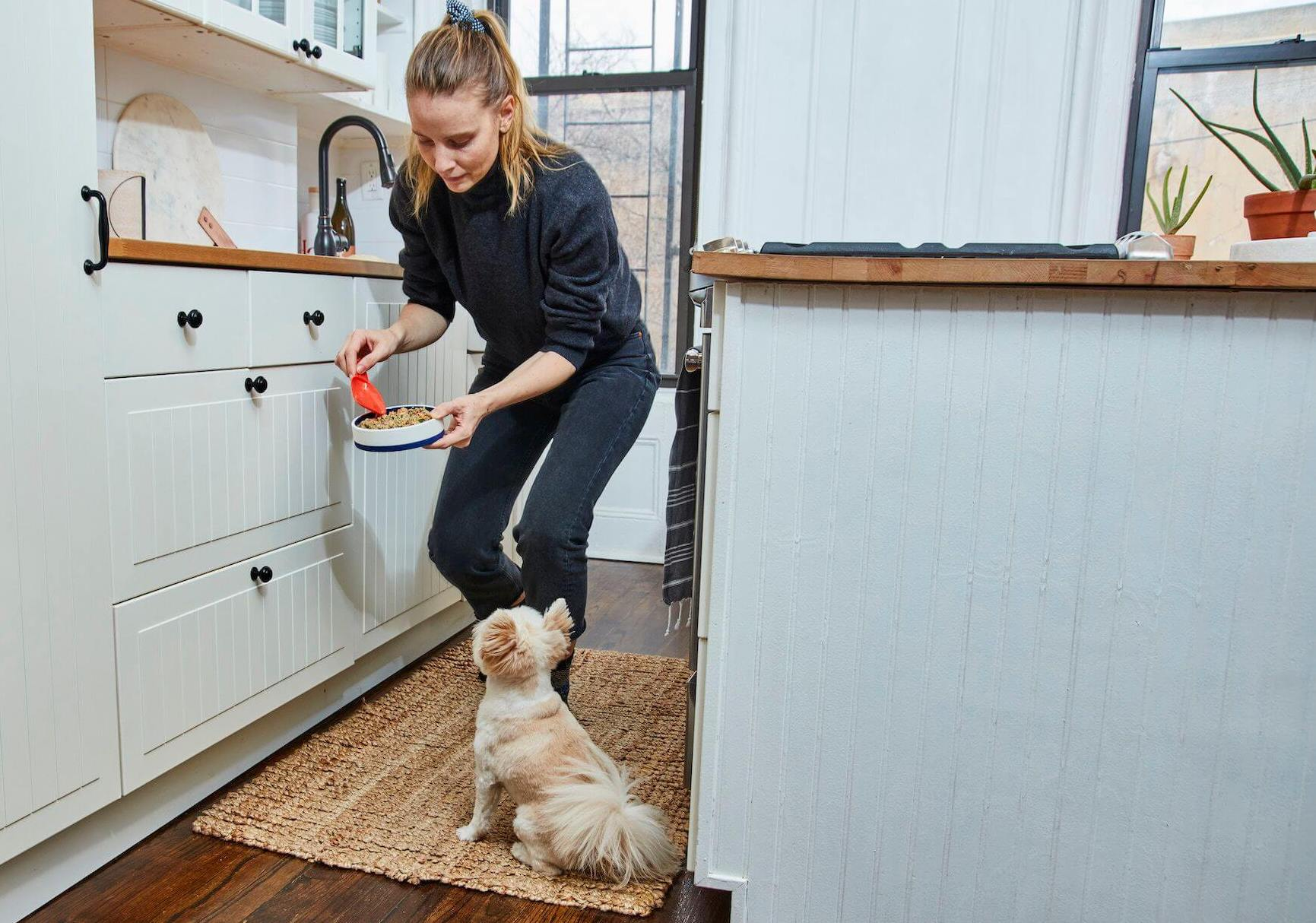 woman-trains-her-dog-to-be-patient-while-waiting-for-food