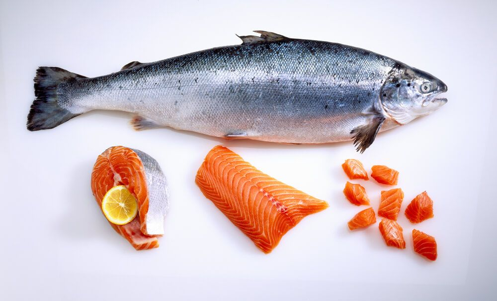 fresh-and-prepared-salmon