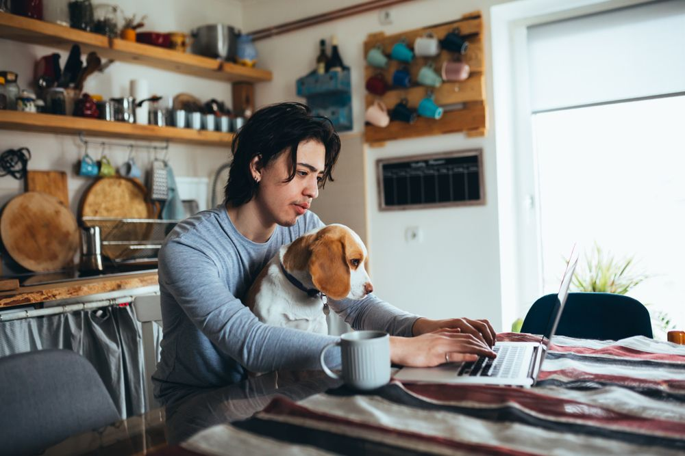 young-man-plans-out-day-with-his-dog-for-thanksgiving