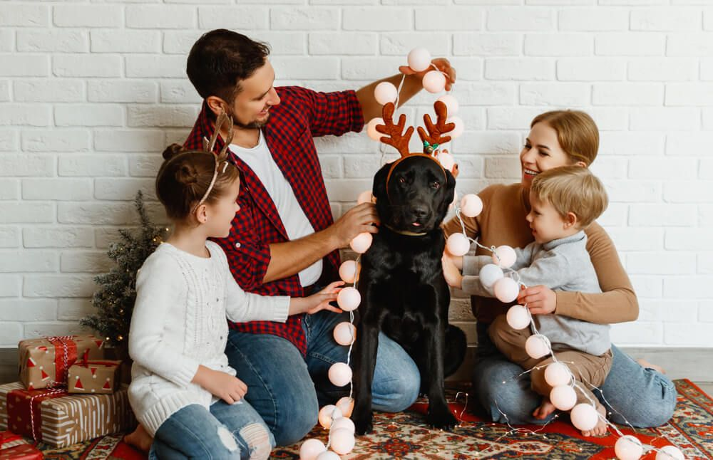 family-of-four-involve-their-dog-in-christmas-traditions