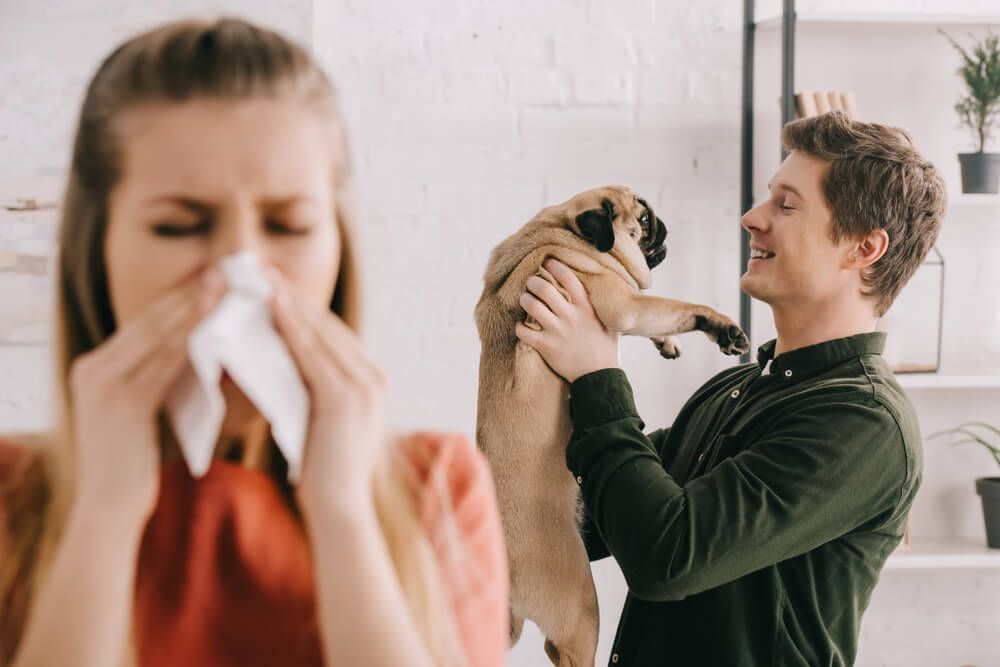 woman-with-cold-blows-her-nose-while-husband-plays-with-dog