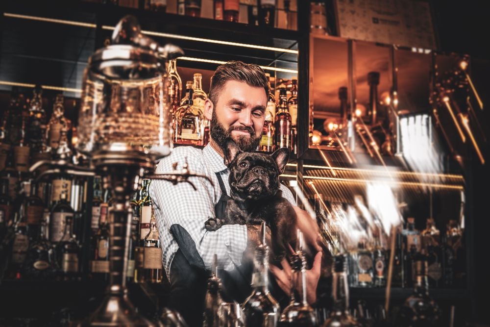 young-bartender-with-a-french-bulldog