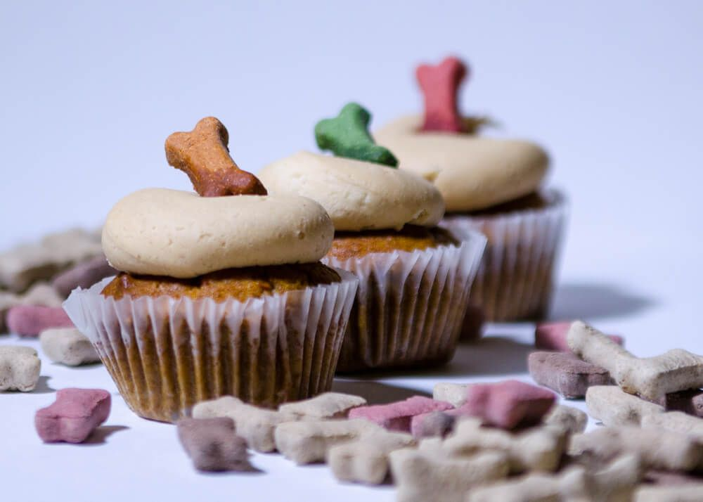 homemade-cupcakes-for-dogs