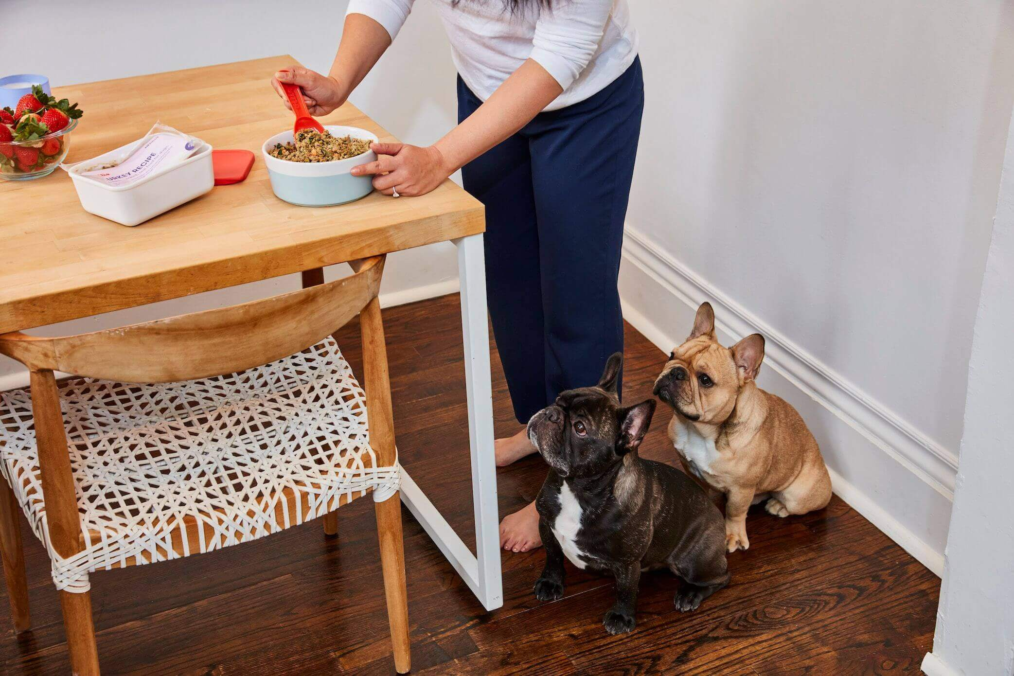 nutritionally-balanced-dog-food-for-all-life-stages