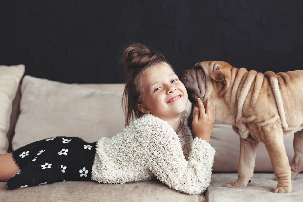 young-girl-gets-kisses-from-her-pet-shar-pei