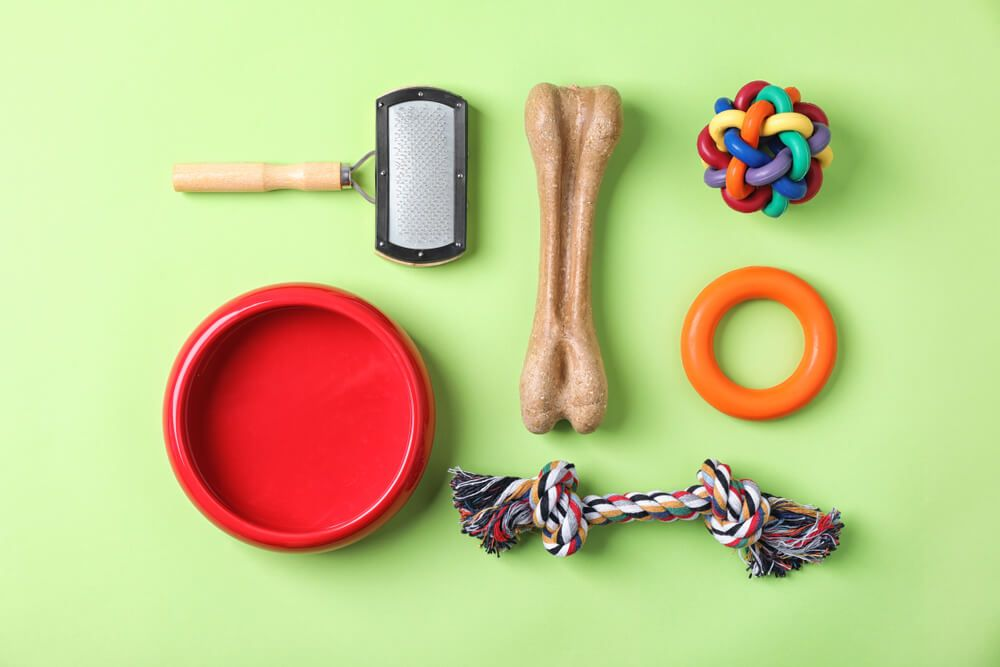 dog-toys-and-grooming-tools-on-a-light-green-background