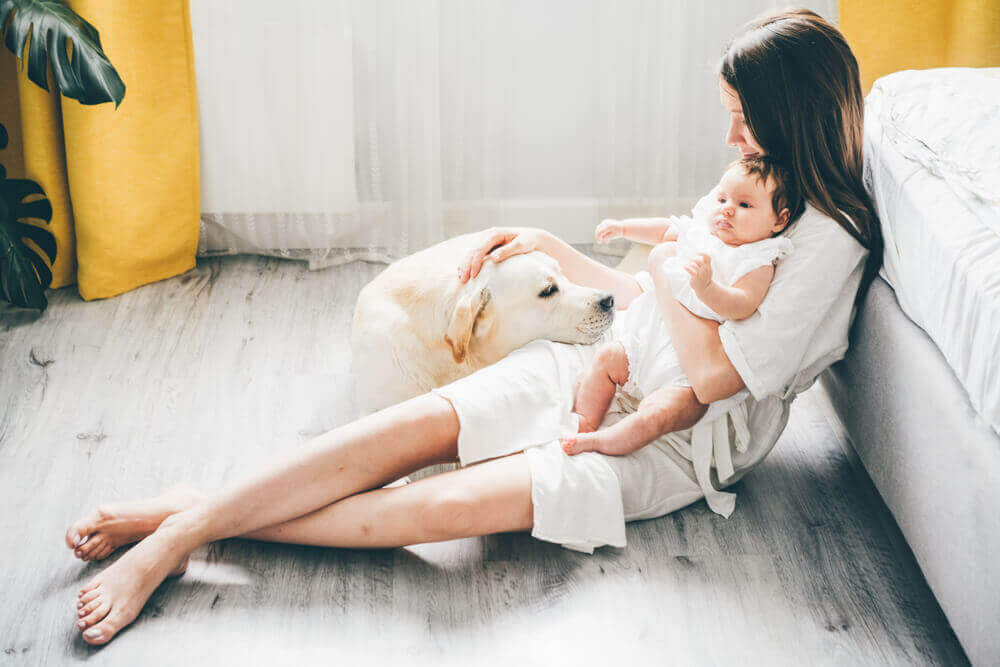 woman-introduces-new-dog-to-her-young-baby