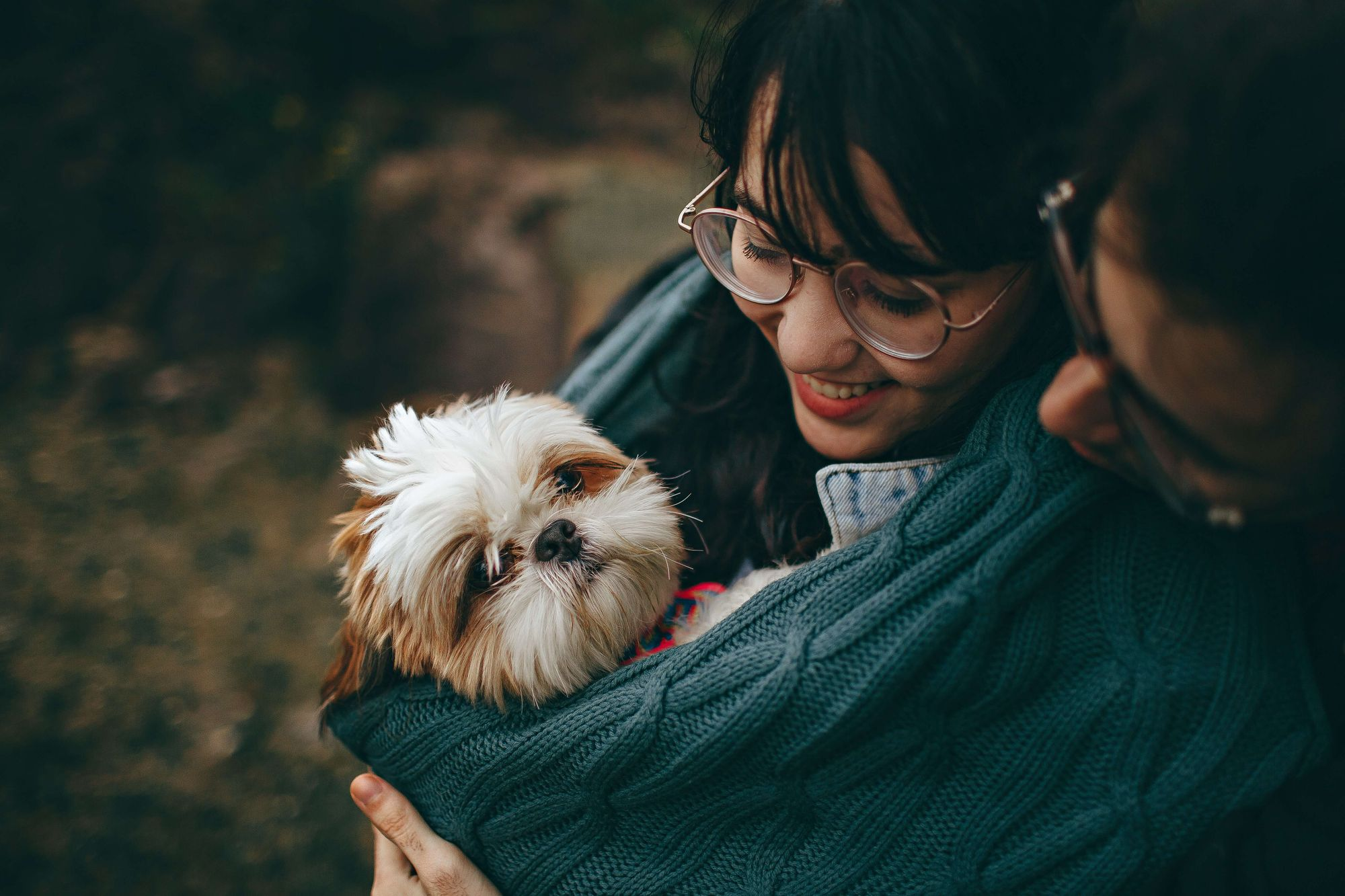couple-hold-small-white-Shih-Tzu-in-folds-of-a-sweater--1-