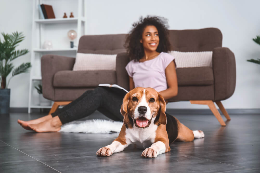 cute-beagle-and-woman-sit-on-floor-of-a-stylish-minimal-apartment