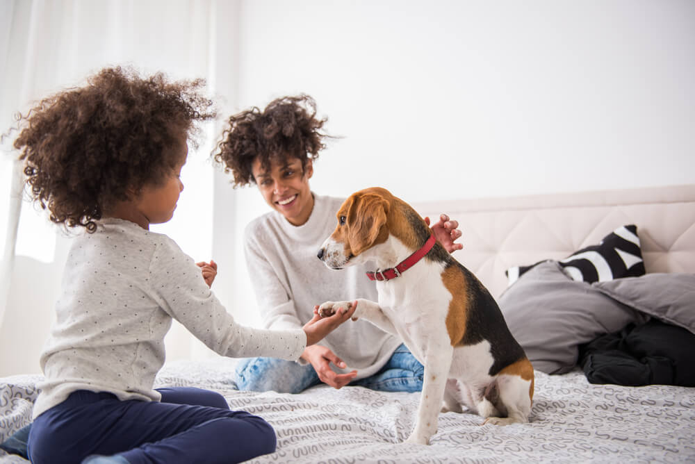 young-mother-sits-on-bed-with-her-daughter-and-puppy