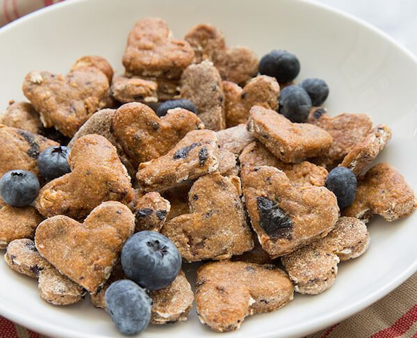 7 Superfood Snacks Your Pup Will Love