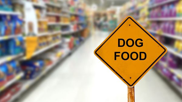 The Dog Food Marketing Terms You Should Beware Of