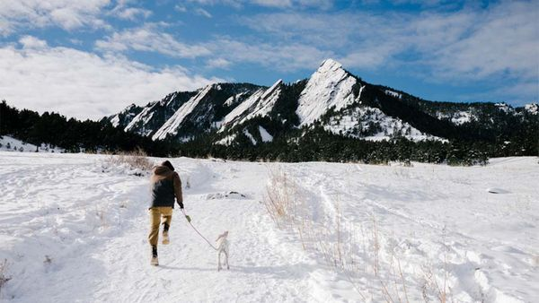 5 Winter Getaways That Go Way Beyond Dog-Friendly