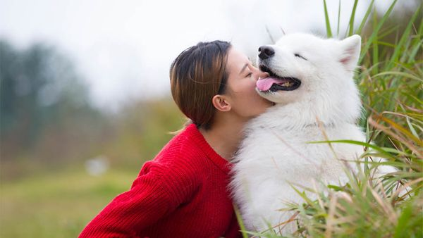 7 Ways Your Pup Makes You a Healthier, Happier Human