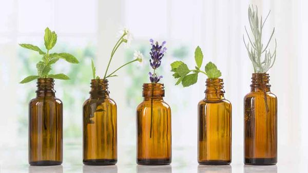 Is Aromatherapy For Dogs Safe and Does It Work?