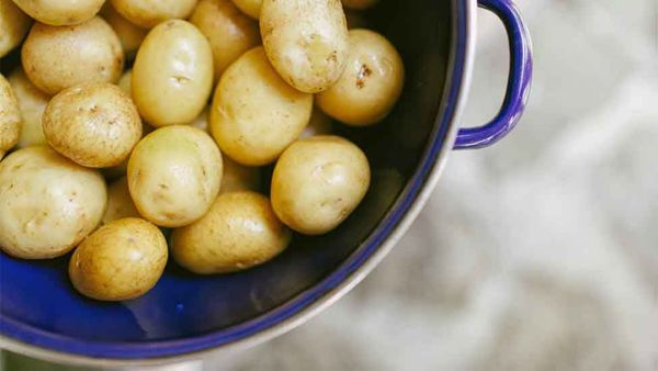 Should Potatoes Be a Part of Your Pup's Diet?