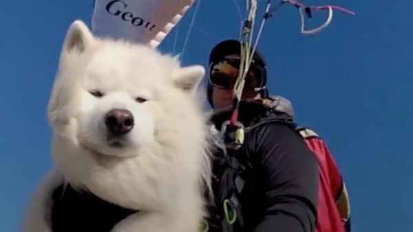 The Friday Warm and Fuzzies