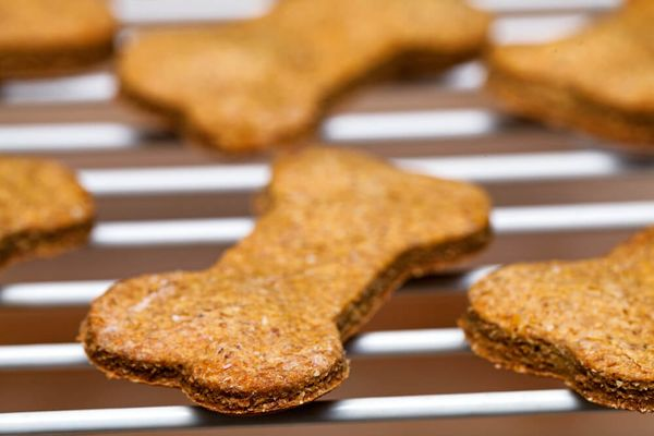 Dog-approved Cookie Recipes for Your Next Bake-off