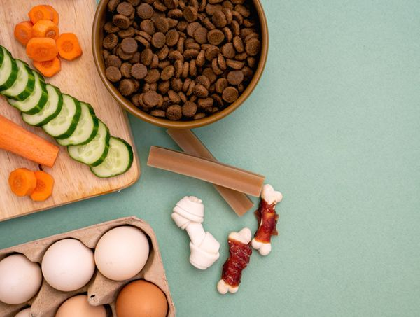 10 Tips for Making Kibble Nutritious & Delicious